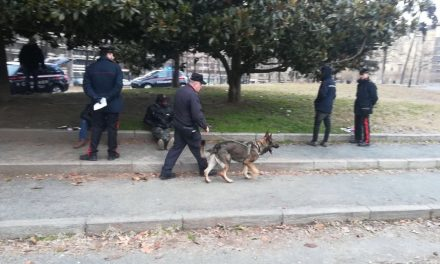 TORINO – Controllo straordinario dei carabinieri al parco del Valentino