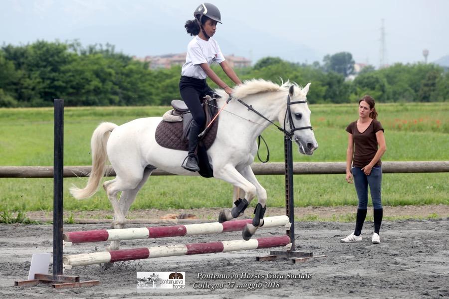 VENARIA – COLLEGNO Pontenuovohorses, un luogo dove i bambini ed cavalli vivono in perfetta sintonia