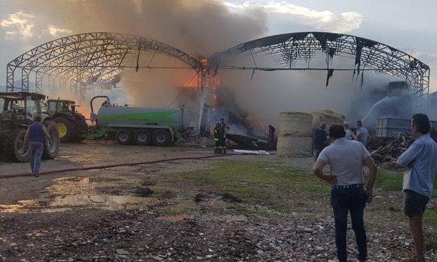 """PIANEZZA -Incendio nell'azienda agricola """"La Primula """""""